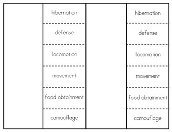 Animal Adaptations Physical & Behavioral