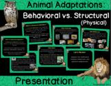 Animal Adaptations : Structural Vs. Behavioral Presentation (Distance Learning)