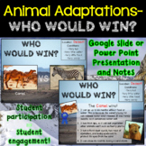 Animal Adaptations (Distance Learning included)