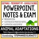 Animal Adaptations PowerPoint, Notes & Exam
