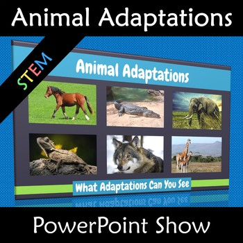 Animal Adaptations PowerPoint Show Physical Vs Behavioral