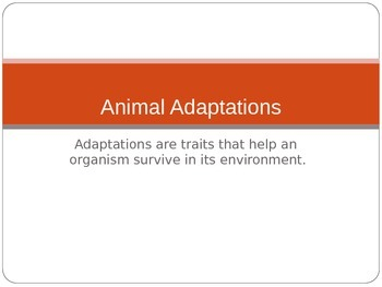 Animal Adaptations Powerpoint and Lab