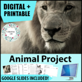 Animal Project - Adaptations and Evolution - PBL