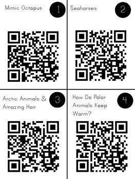 Animal Adaptations QR Code Exploration