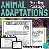 Animal Adaptations Reading Comprehension Passage