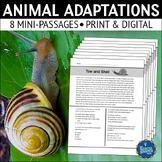 Animal Adaptations Reading Comprehension Passages Set 2
