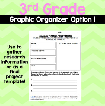 Animal Adaptations Research: Graphic Organizers