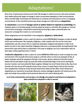 Animal Adaptations: Complete Research Project for Students (Print and Go!)