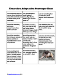 Animal Adaptations Scavenger Hunt