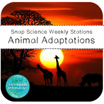 Animal Adaptations Science Stations