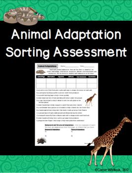 Animal Adaptations Sort Activity