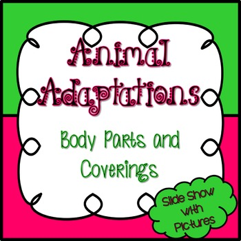 Science Animal Adaptations Student Review - Body Parts and