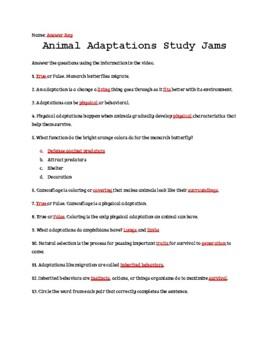 Animal Adaptations Study Jams