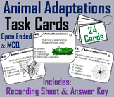 Animal Adaptations Task Cards: Hibernation, Camouflage, Migration, etc