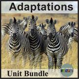 Animal Adaptations Unit Bundle