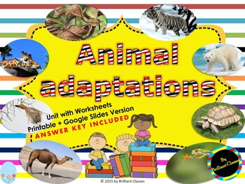 Animal Adaptations - Unit Pack with Worksheets