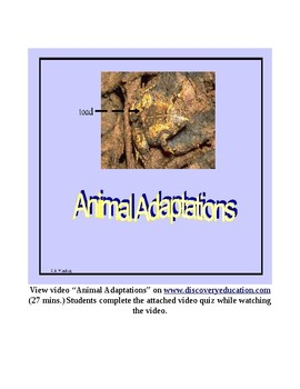 Animal Adaptations Video Quiz Activity
