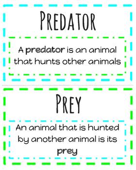 Animal Adaptations Vocabulary Posters