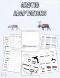 Animal Adaptations - WINTER / ARCTIC