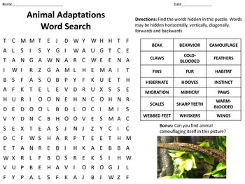 Plant and Animal Adaptations Word Search - eduBakery.com