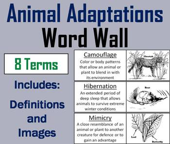 Animal Adaptations Word Wall Cards