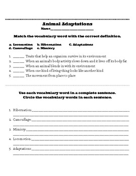 Animal Adaptation Worksheet Teaching Resources Teachers Pay Teachers
