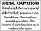Animal Adaptations are like Super Powers! - Picture Book & Science Pack