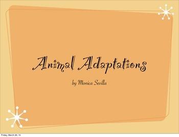 Animal Adaptations eBook