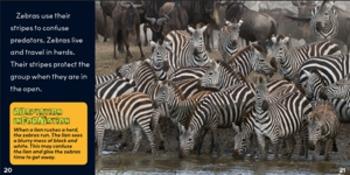 Animal Adaptations flip e-book