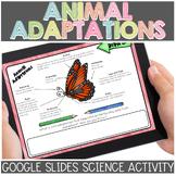 Animal Adaptations for Google Classroom