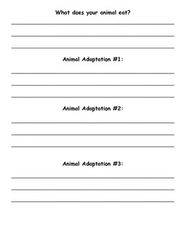 Animal Adaptations/Survival Project