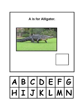 Animal Adapted Book Letters A-N