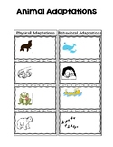 Animal Adaptions Interactive Notebook Page