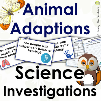 The Big Sports Investigation: Animal Adaptations
