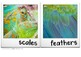 Information Text Writing Word Wall Cards + Posters - Appearance