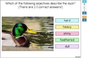 #slpboomforfree Animal Adjectives BOOM CARDS™ FREEBIE