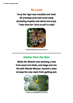 Animal Alliteration Poetry Resource for Grades 3 - 6