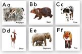 Animal Alphabet Cards | Animal ABC's | Watercolor Alphabet Cards