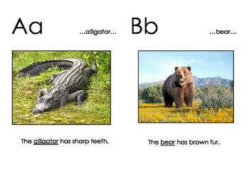 Animal Alphabet Cards--Half Size