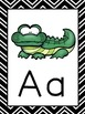 Animal Alphabet Chart and Posters (Black and White Designs)