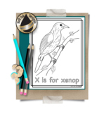 Animal Alphabet Coloring Pages: X is for Xenop