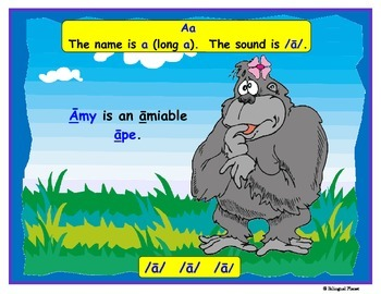 Animal Alphabet (English Edition)