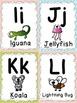 Animal Alphabet Flashcards