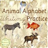 Alphabet Writing Practice - Cursive