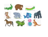 Animal Alphabet - Matching beginning sounds of Animal to c