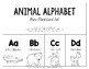 Animal Alphabet Mini  Flash Card Set