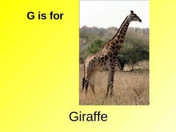 Animal Alphabet Powerpoint