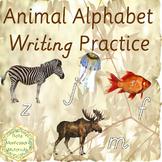 Alphabet Practice Writing - D'Nealian