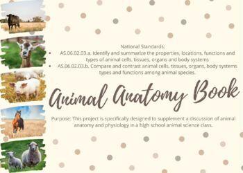 Animal Anatomy Book