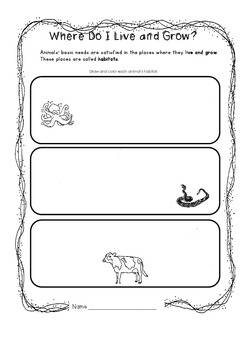 Animal Antics Worksheets